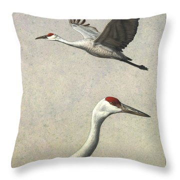 Sandhill Cranes Throw Pillow by James W Johnson