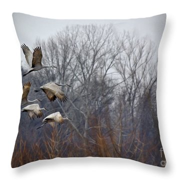 Sandhill Cranes Takeoff Throw Pillow