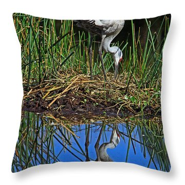 Sandhill Nest Reflection Throw Pillow by Larry Nieland