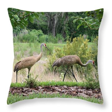 Sandhills Through The Crepe Myrtles Throw Pillow