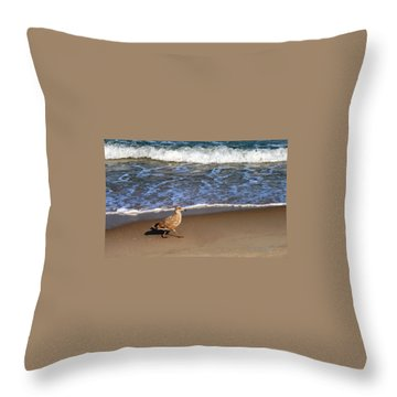Sandpiper At Ortley Beach, Nj Throw Pillow