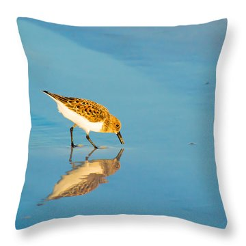 Sandpiper Mirror Throw Pillow