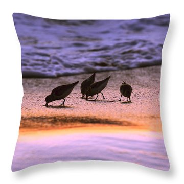 Sandpiper Morning Throw Pillow