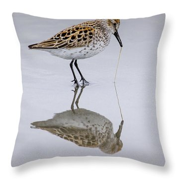 Sandpiper Pull Throw Pillow by Sonya Lang