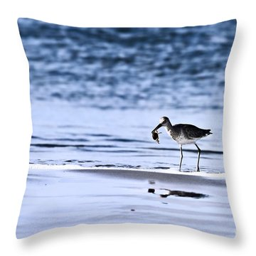 Sandpiper Throw Pillow by Stephanie Frey