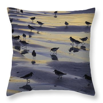 Sandpiper Sunset Convention Throw Pillow
