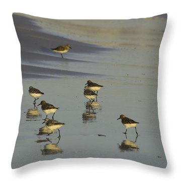 Sandpiper Sunset Reflection Throw Pillow