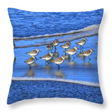 Sandpiper Symmetry Throw Pillow by Robert Bynum