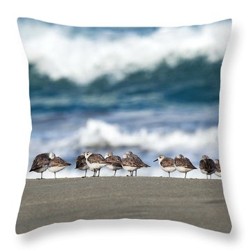 Sandpipers Keeping Warm On A Very Cold Day At The Beach Throw Pillow