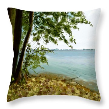 Throw Pillow featuring the painting Sandusky Bay by Shawna Rowe