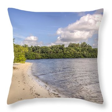 Throw Pillow featuring the photograph Sandy Beach by Jane Luxton