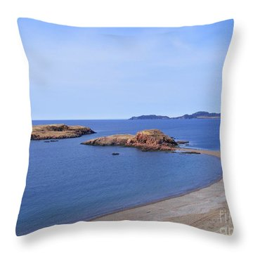 Sandy Beach - Little Island - Coastline - Seascape  Throw Pillow by Barbara Griffin