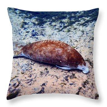 Sandy Bottom Manatee 1 Throw Pillow
