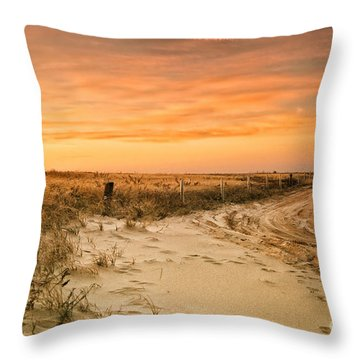 Sandy Road Leading To The Beach Throw Pillow by Sabine Jacobs