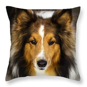 Sandy The Perfect Model Throw Pillow