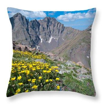 Sangre De Cristos Crestone Peak And Wildflowers Throw Pillow