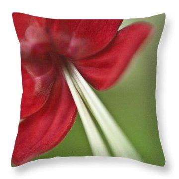 Sanguine Throw Pillow by Heiko Koehrer-Wagner