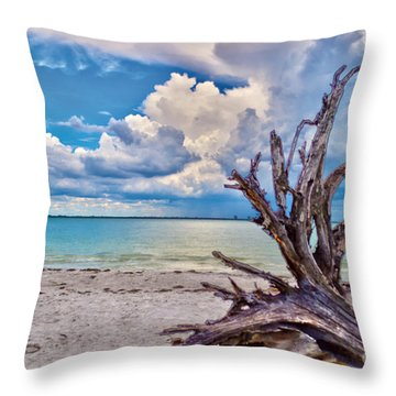 Sanibel Island Driftwood Throw Pillow by Timothy Lowry