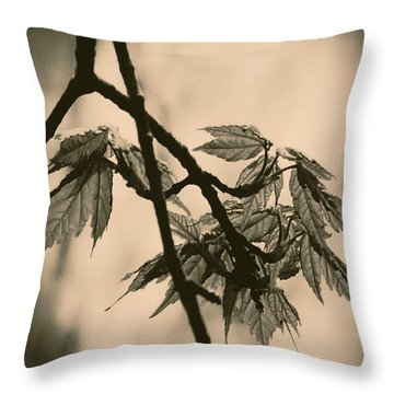 Sans Titre 2015 Throw Pillow