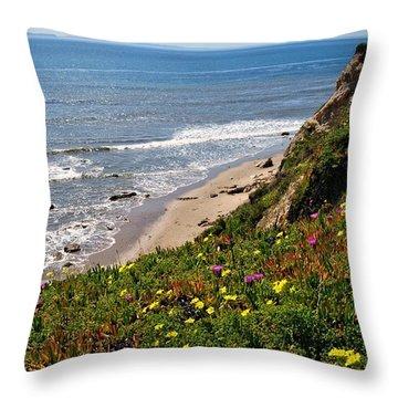 Santa Barbara Beach Beauty Throw Pillow