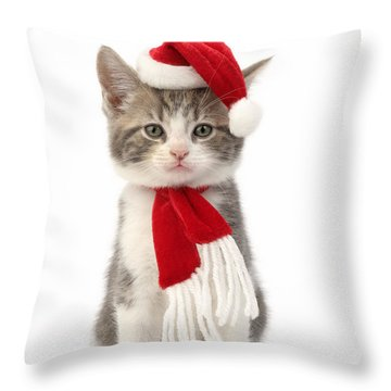Santa Cat Throw Pillow by Greg Cuddiford