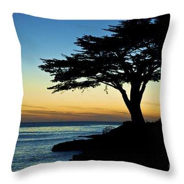 Santa Cruz California 3 Throw Pillow