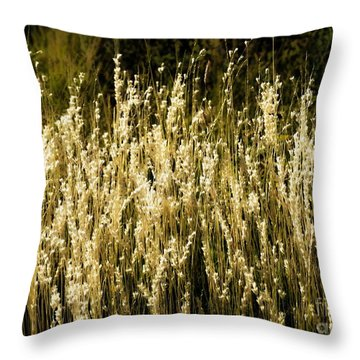 Santa Fe Grasses Throw Pillow