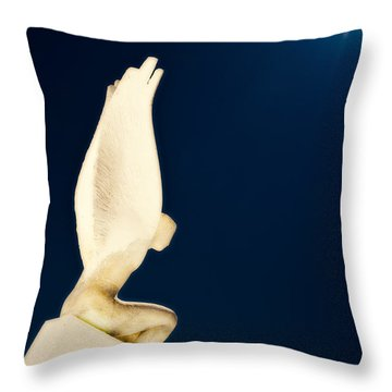 Throw Pillow featuring the photograph Santorini Guardian by Meirion Matthias