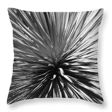 Sapphire Skies 2 Throw Pillow