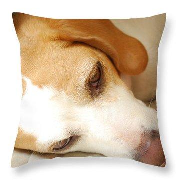 SAS Throw Pillow