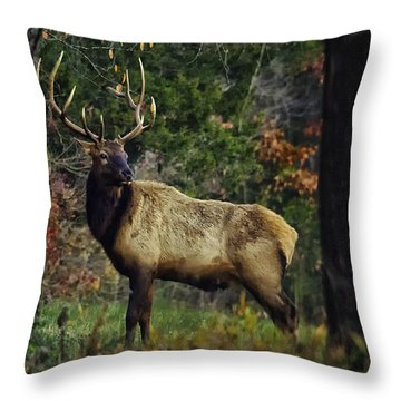 Satellite Bull Along Tree Line Throw Pillow