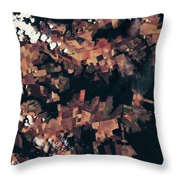 Satellite View Of Fields, Mato Grosso Throw Pillow