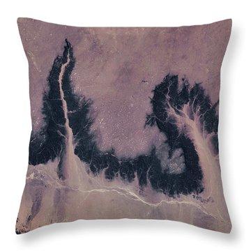 Satellite View Of River Near Agades Throw Pillow