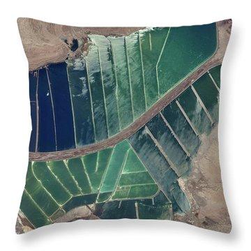 Satellite View Of Salt Evaporation Throw Pillow