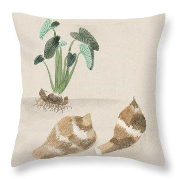 Satoimo Taro Potato  Throw Pillow by Aged Pixel