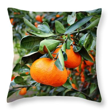 Satsumas Throw Pillow