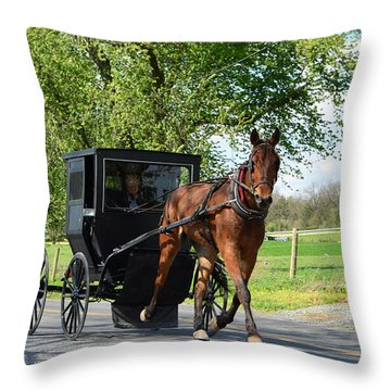 Saturday Buggy Ride Throw Pillow