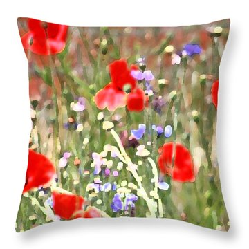 Throw Pillow featuring the photograph Saturday's Wonder by The Art Of Marilyn Ridoutt-Greene