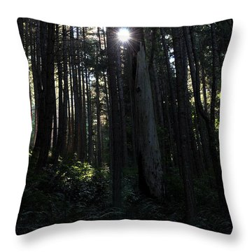 Throw Pillow featuring the photograph Sauk Woods by Rebecca Parker