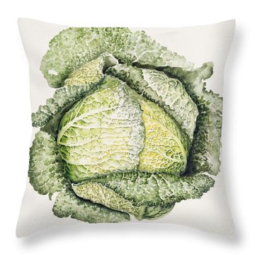 Savoy Cabbage  Throw Pillow by Alison Cooper