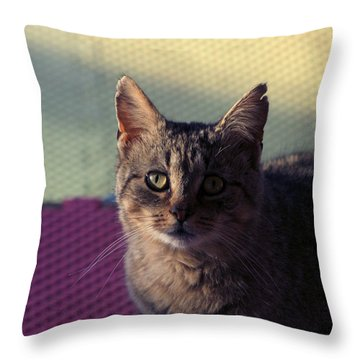 Saw Tooth Throw Pillow