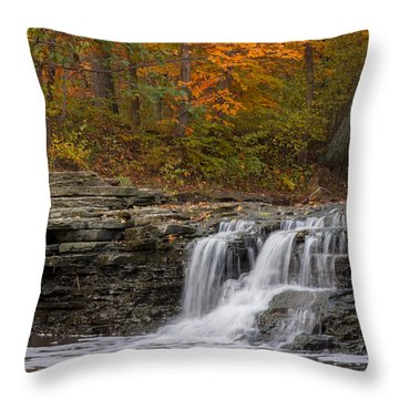Sawmill Creek 2 Throw Pillow