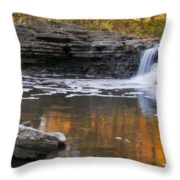 Sawmill Creek 3 Throw Pillow