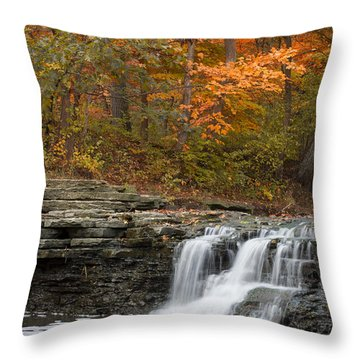 Sawmill Creek Throw Pillow