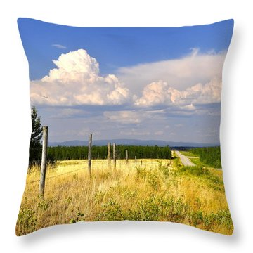 Throw Pillow featuring the photograph Sawmill Creek Road by Cathy Mahnke
