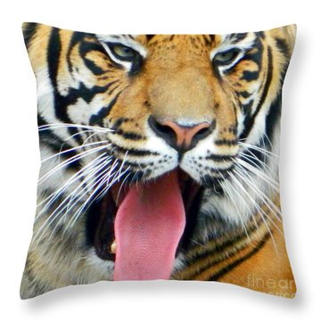 Say Ahhh Throw Pillow