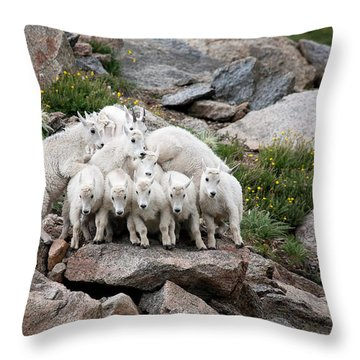 Say Cheese Throw Pillow by Jim Garrison