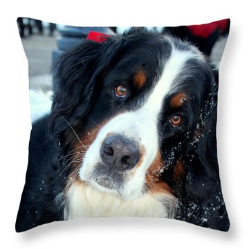 You Said You Love Me Throw Pillow by Fiona Kennard