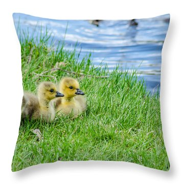 Staying Together Throw Pillow