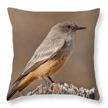 Say's Phoebe On A Fence Post Throw Pillow by Jeff Goulden
